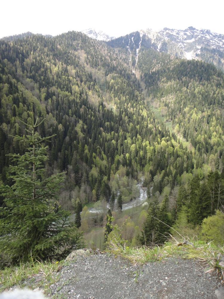 Путешествие в Абхазию на Yamaha YBR125 Post-14910-1431674024_thumb